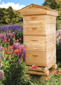 Bee Garden | 9Hives Beekeeping & Beehive Equipment Okanagan